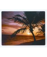 Hiirematt Fellowes palm/päikeseloojang