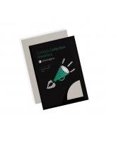 Esinduspaber CURIOUS Metallics Lustre A4/120gr/50L